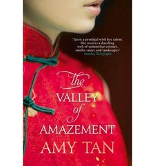 VALLEY OF AMAZEMENT, THE-TAN, AMY-9780007507429