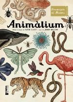 ANIMÀLIUM -SCOTT, KATIE (L.) / BROOM, JENNY-9788415315223